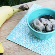 Vegan chocolate banana ice cream recipe