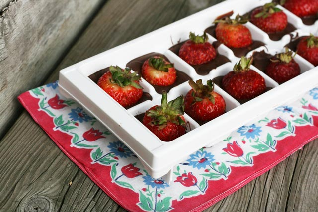 Chocolate-covered strawberries, made in an ice cube tray. Just 2 ingredients! Repin to save.