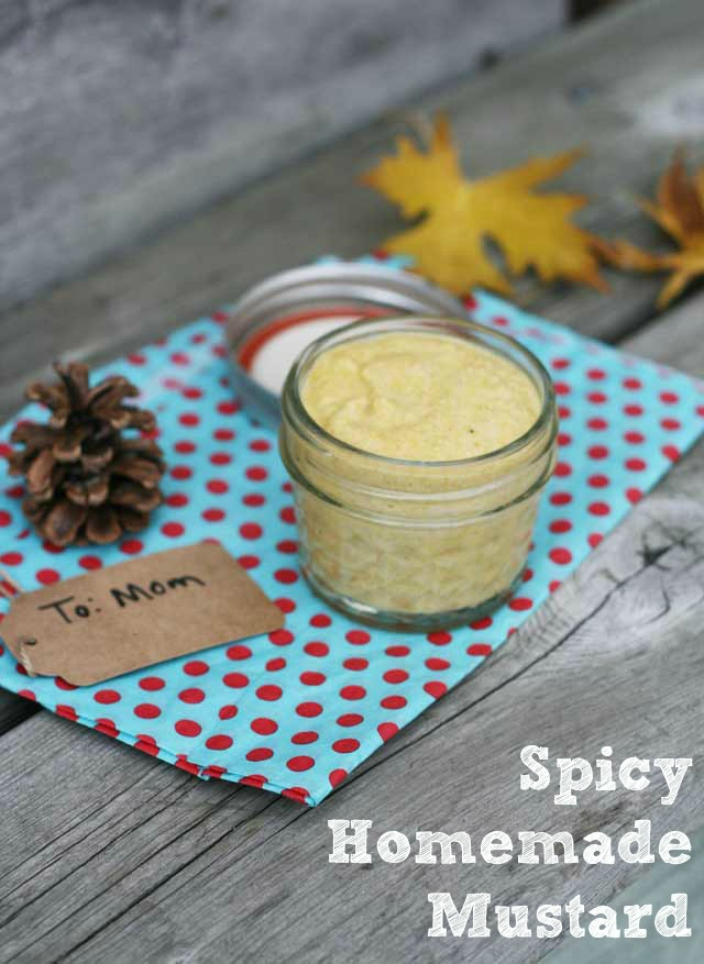Spicy homemade mustard recipe makes a great gift. From Cheap Recipe Blog.