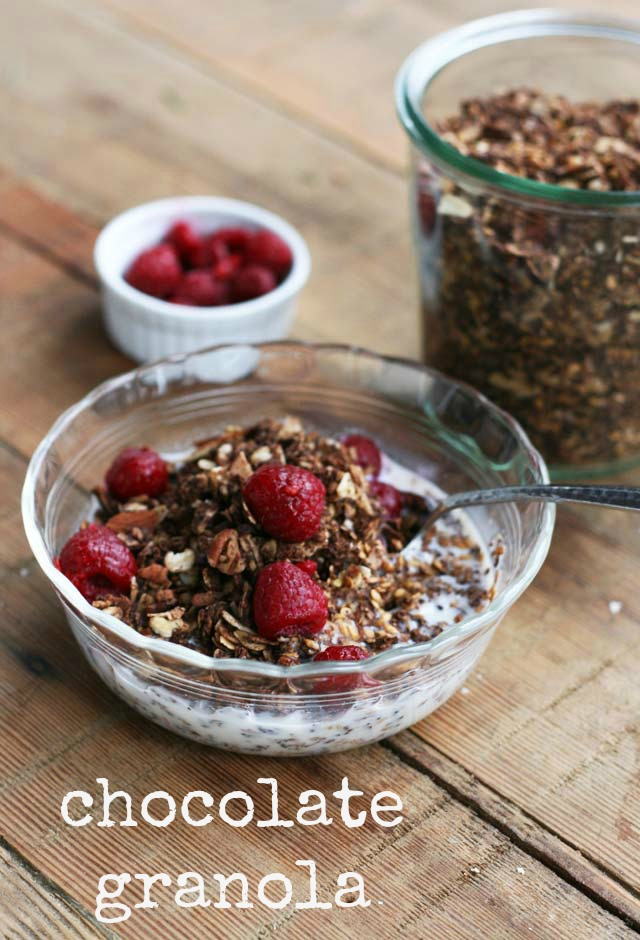 Chocolate granola recipe, from Cheap Recipe Blog