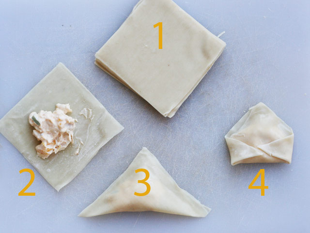 How to make mango chicken wontons, from Cheap Recipe Blog
