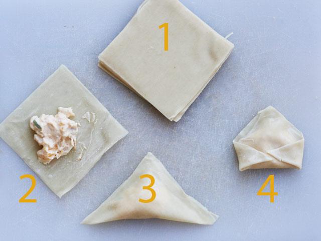 How to make mango chicken wontons, from Cheap Recipe Blog