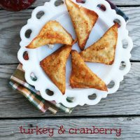 Turkey & Cranberry Wontons Recipe