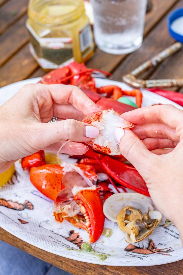 Learn how to make traditional Maine lobster bake in a pot: Click through for recipe!